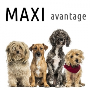 MAXI Avantage